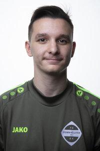 Dominik Hermann